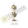 แบบจำลอง DNA แบบ 1