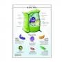 แผ่นภาพนูนไทย 3D เรื่องเซลล์พืช (Plant Cell)